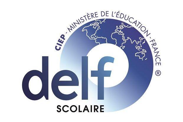 Wir sind jetzt DELF- Schule
